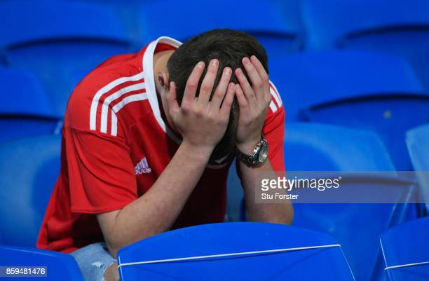 Wales fan looks dejected in defeat after the FIFA 2018 World Cup Group D Qualifier between Wales and Republic of Ireland at the Cardiff City Stadium...