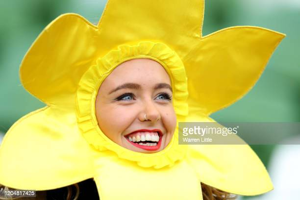 Wales fan looks on from behind a daffodil mask prior to the 2020 Guinness Six Nations match between Ireland and Wales at Aviva Stadium on February...