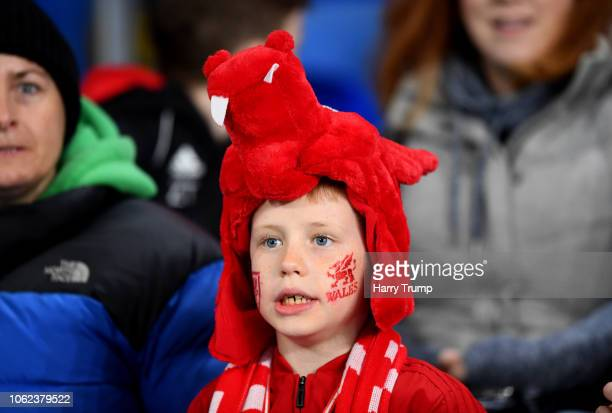 Wales fan looks on prior to the UEFA Nations League Group B match between Wales and Denmark at Cardiff City Stadium on November 16 2018 in Cardiff...
