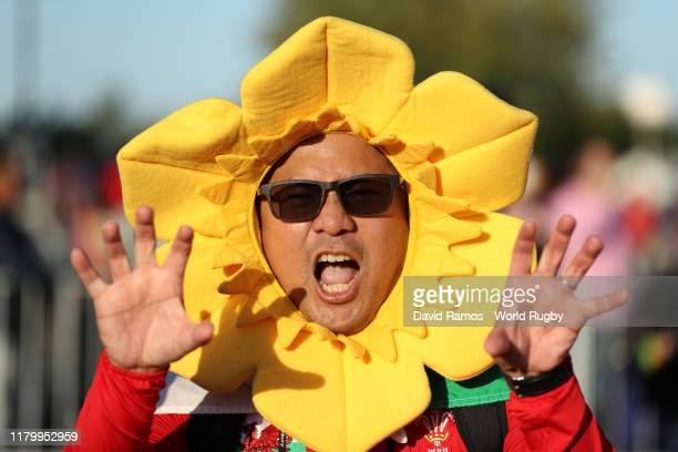 Wales fan poses for a photo prior to the Rugby World Cup 2019 Group D game between Wales and Fiji at Oita Stadium on October 09 2019 in Oita Japan