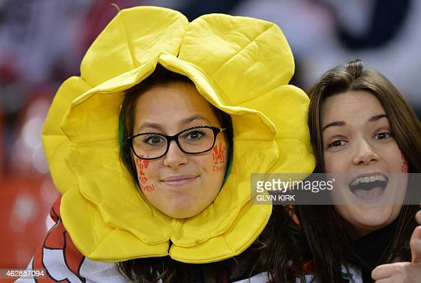 Wales fan poses wearing a daffodil headdress ahead of kick off of the Six Nations international rugby union match between Wales and England at the...