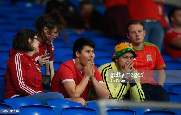 Wales fans look dejected in defeat after the FIFA 2018 World Cup Group D Qualifier between Wales and Republic of Ireland at the Cardiff City Stadium...