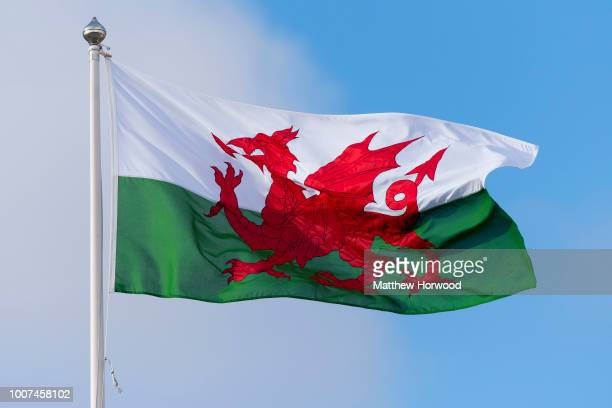 Wales flag seen flying at Cardiff City Hall on March 28, 2016 in Cardiff, United Kingdom.