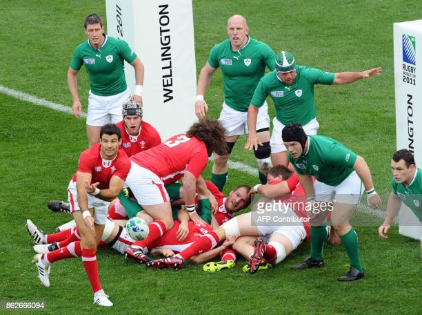 Wales' scrumhalf Mike Phillips passes the ball during the 2011 Rugby World Cup quarterfinal match Ireland vs Wales at the Wellington Regional stadium...