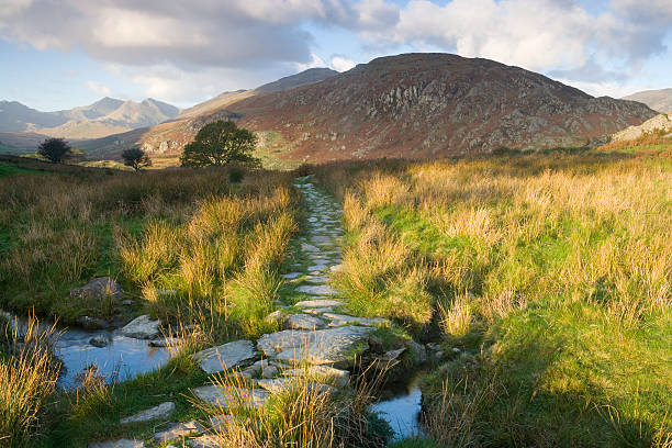 Wales, Snowdonia National Park, Footpath In Valley Wall Art
