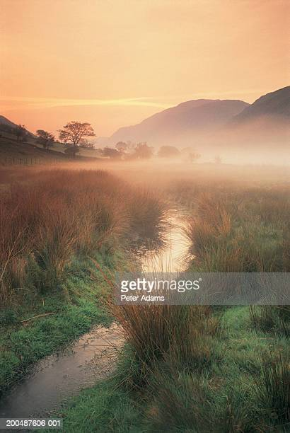wales, snowdonia np, stream and mist, dawn - september stock pictures, royalty-free photos & images