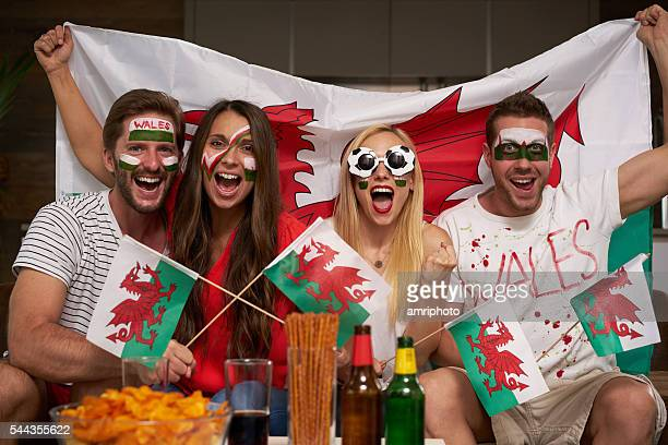 Wales soccer fans cheering