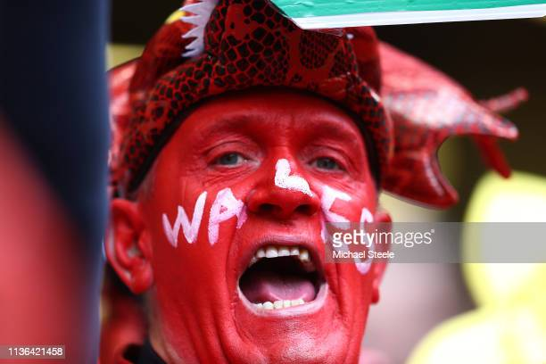 Wales supporter in full voice during the Guinness Six Nations match between Wales and Ireland at Principality Stadium on March 16, 2019 in Cardiff,...