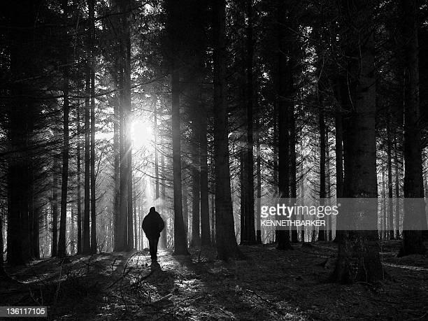 Walk in dark forest
