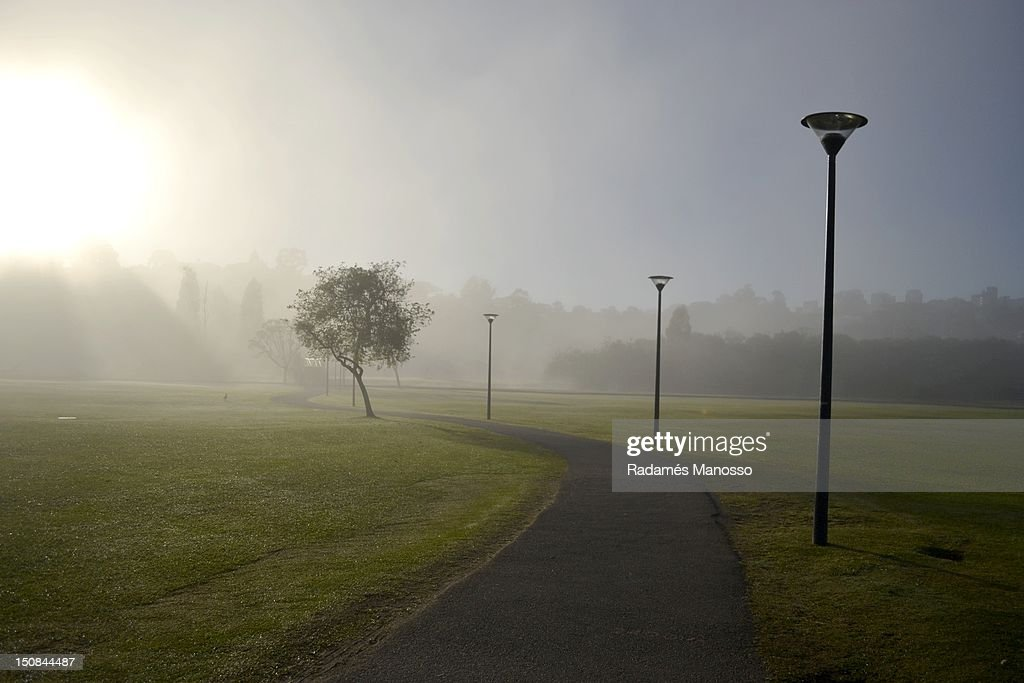 Walk in mist : Foto de stock