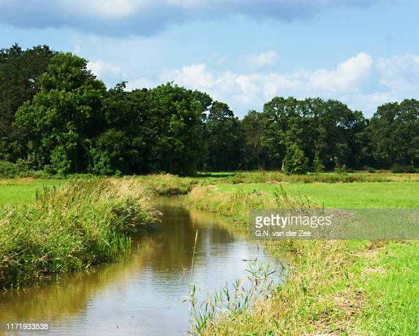 a walk in the valley of the reest - drenthe stock pictures, royalty-free photos & images
