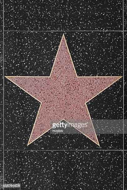 Walk of Fame Hollywood Blank Star