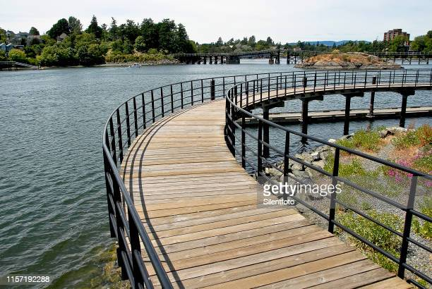 walk over water - george wood stock pictures, royalty-free photos & images