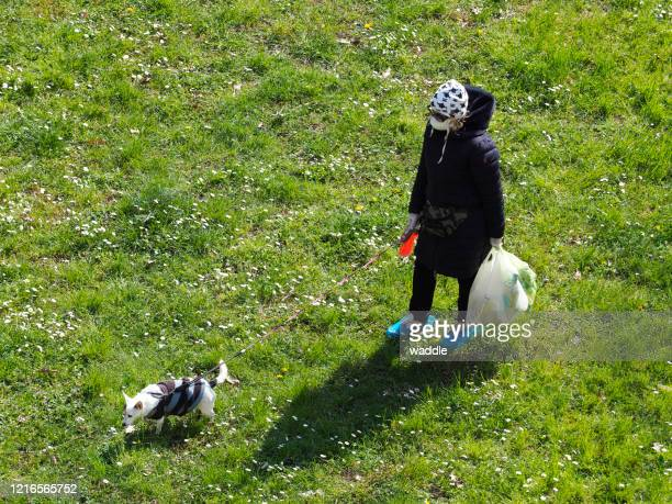 walk the dog at coronavirus time - shoe covers stock pictures, royalty-free photos & images