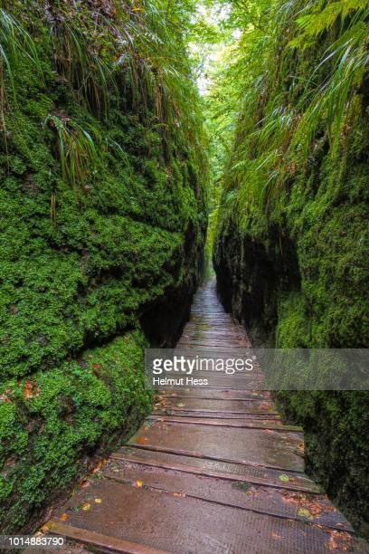 walk through the dragon gorge - アイゼナッハ ストックフォトと画像