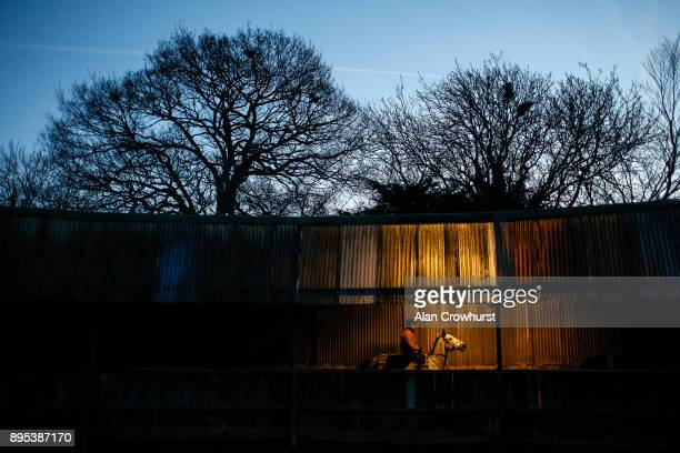 A walk under cover before going to the gallops at Nicky Hendersons Seven Barrows stables on December 19 2017 in Lambourn United Kingdom
