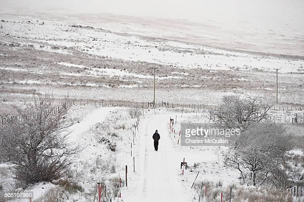 A walker makes his way through the snow across Black mountain on January 15 2016 in Belfast Northern Ireland The first heavy snowfall of the year has...