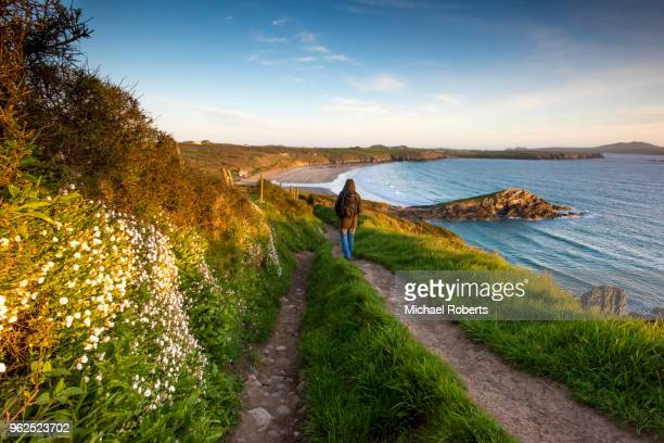 walker on the pembrokeshire coast path at whitesands near st davids, wales - wales stock-fotos und bilder