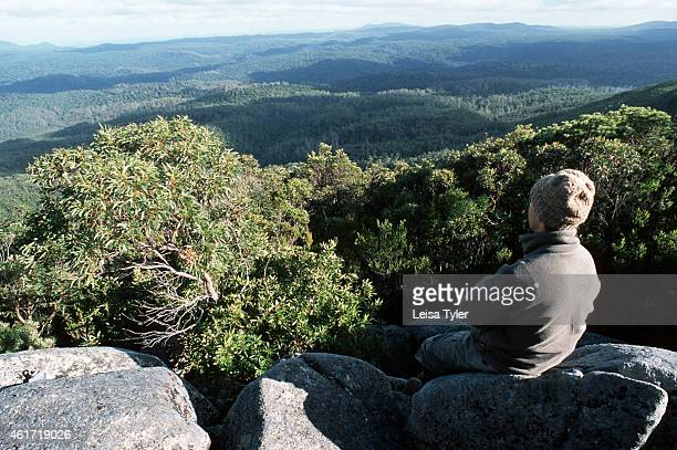 FORESTS TASMANIA AUSTRALIA A walker overlooking the Tarkine the largest tract of temperate rainforest in the world Containing a rare red myrtle many...