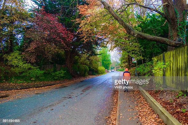 Walker with Autumn colours, Bosham, East Sussex
