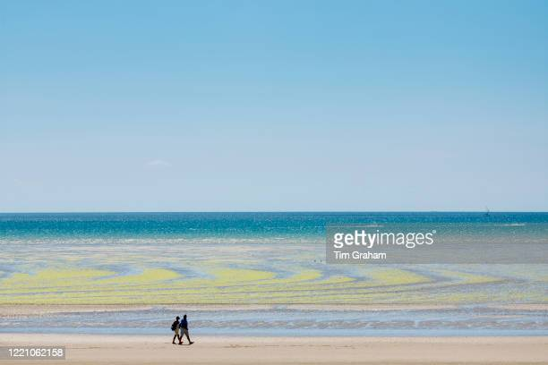 Walkers and seaweed forming geometric shapes on sandy beach at St Aubin's Bay Jersey Channel Isles