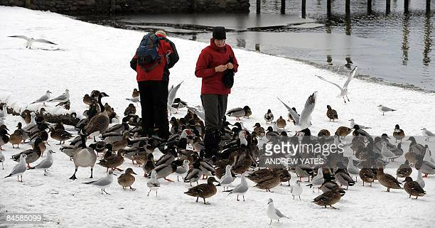 Walkers feed the birds on the snow covered shore of Derwentwater in Keswick Cumbria northern England on February 2 after heavy snow showers covered...