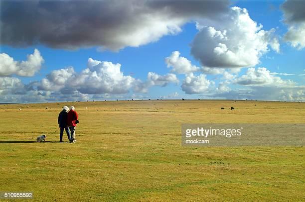 散歩にダートムーア国立公園,英国