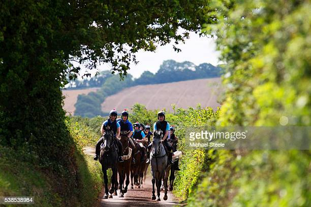 Walkers on third lot head through the lanes near Sandhill Racing Stables on August 7 2015 in Minehead England Sandhill Racing Stables set in 500...