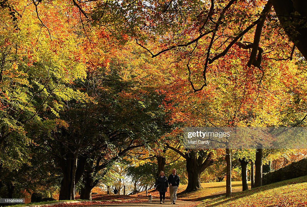 Spectacular Autumn Colours Are Seen After Mild Temperatures Over The Last Two Months : ニュース写真