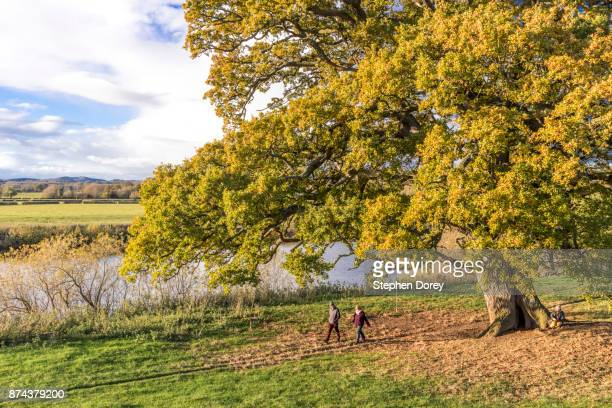 walkers passing on the severn way at deerhurst, gloucestershire uk - gloucestershire fotografías e imágenes de stock