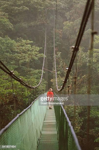 Walking Across Monteverde Cloud Forest Bridge