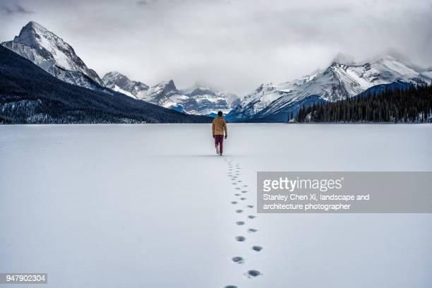 walking alone on lake malinge - territorio selvaggio foto e immagini stock