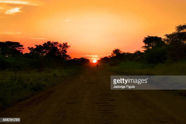 walking at sunset. south sudan. - south sudan stock pictures, royalty-free photos & images