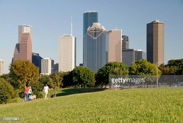walking dogs in the park-  city skyline background - houston stock pictures, royalty-free photos & images