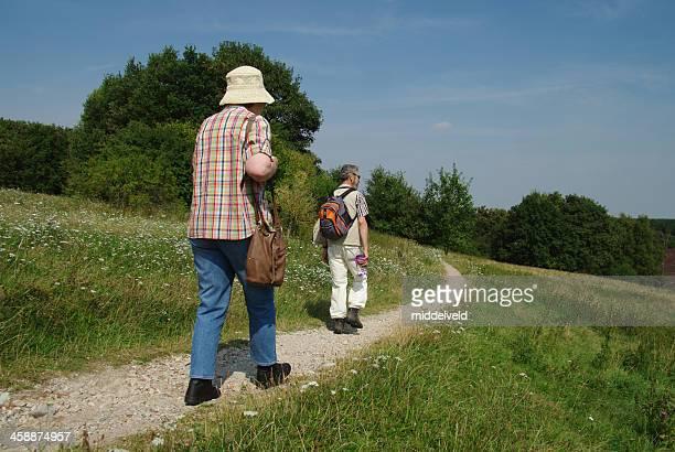 heathland エリアで歩く - オランダ リンブルフ州 ストックフォトと画像