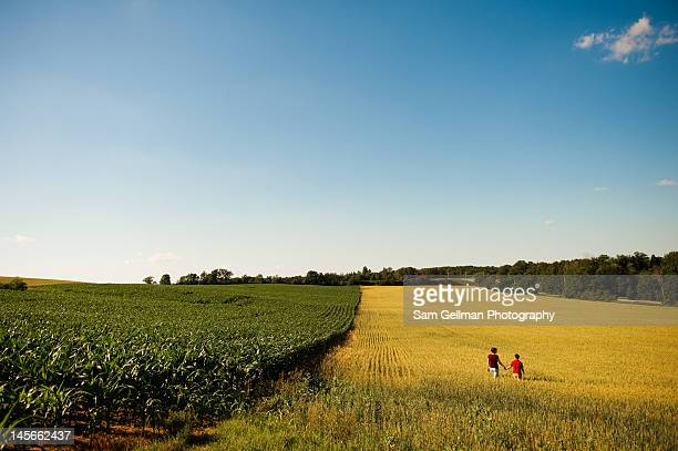 Walking in field in afternoon