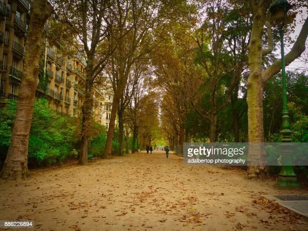 Walking in the autumn of Paris