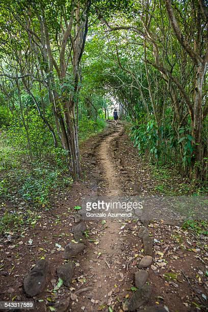 Walking in the countryside in Brazil
