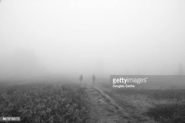 Walking in the fog on a scary night