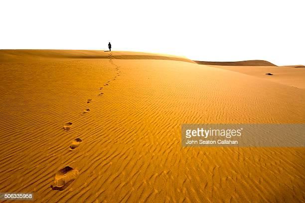 Walking in the Sahara Desert