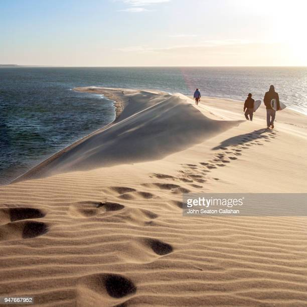 walking in western sahara - homme marocain photos et images de collection