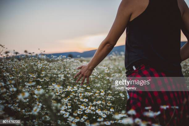 Walking on a camomile meadow