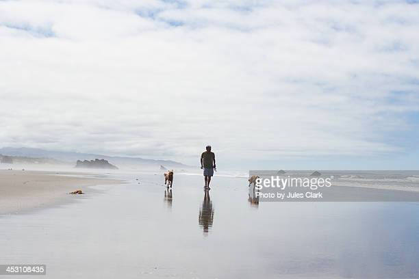 Walking on the beach with dogs