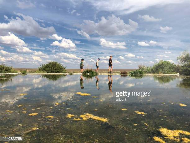 walking on water - the karoo stock photos and pictures