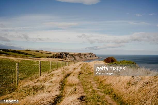 walking path between whitby and robinshood bay with ocean in the - beach stock pictures, royalty-free photos & images