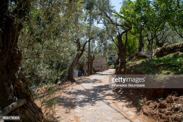 Walking path to Damouchari Beach on May 30 2018 in Pelion Greece Damouchari Beach is natural little port situated on the eastern coast of Pelion can...