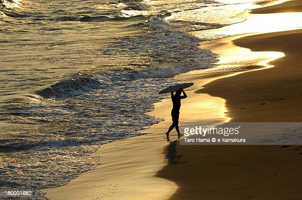 a walking surfer on the sunset beach - image title stock pictures, royalty-free photos & images
