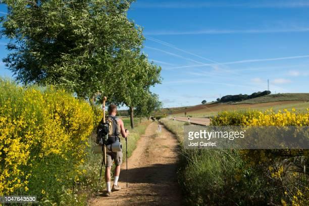 walking the camino de santiago (ledigos, spain) - camino de santiago stock pictures, royalty-free photos & images