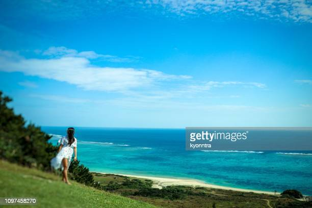 walking the coast line - kyonntra stock pictures, royalty-free photos & images