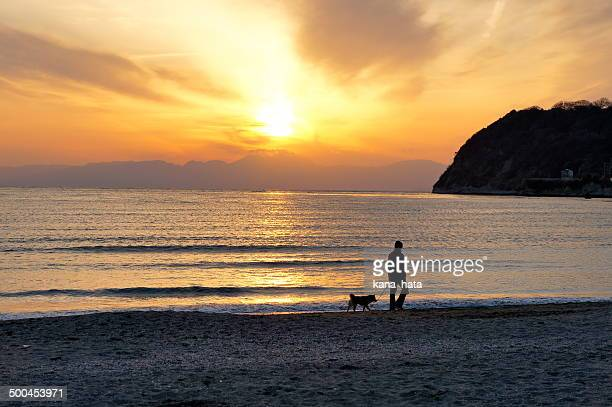 walking the dog at zushi beach - zushi kanagawa stock photos and pictures